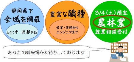 静岡県個別就職相談会