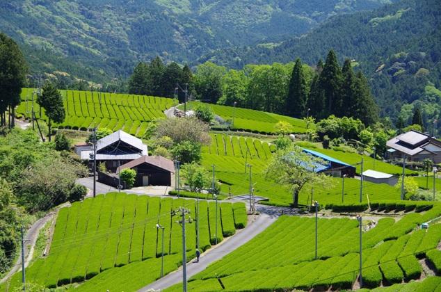 森町 / 静岡県公式移住・定住情報サイト ゆとりすと静岡
